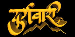 durgwari 3D logo